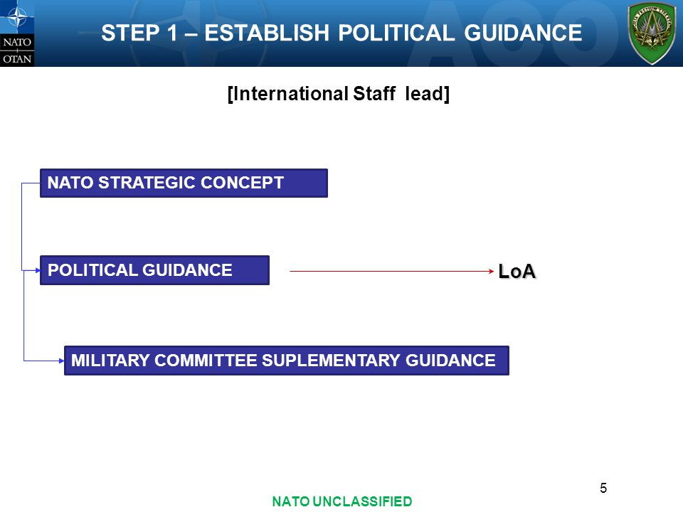 [International Staff lead]